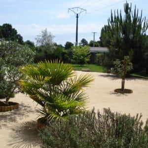 Jardin aride