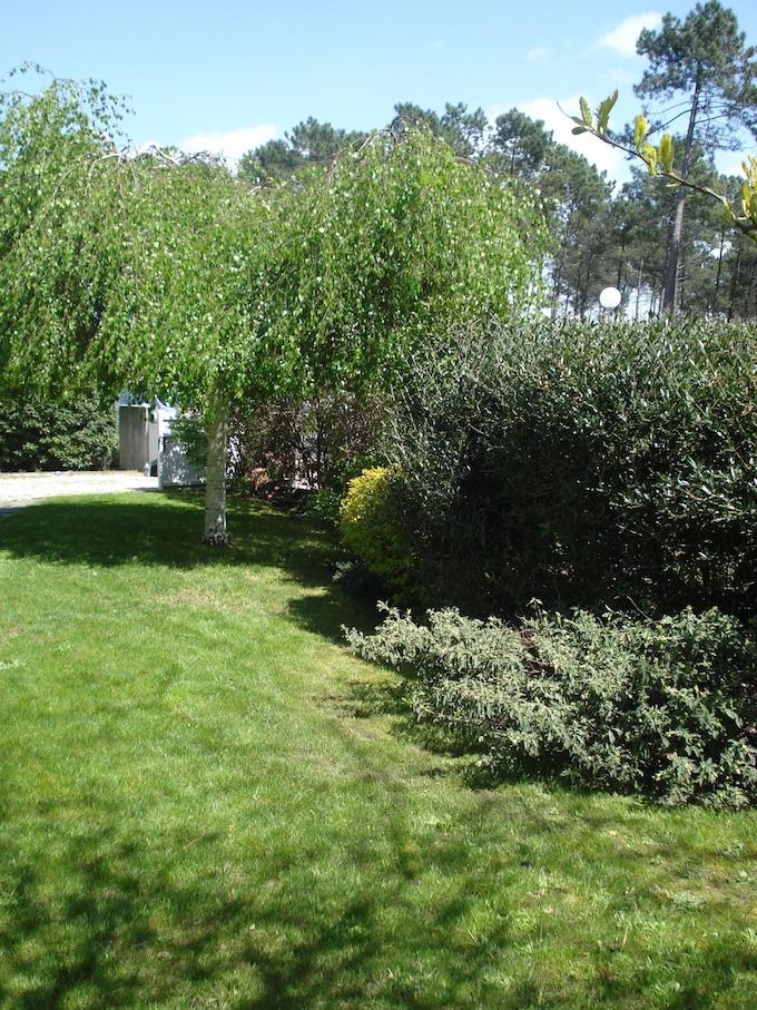 C T Jardins Nos R Alisations En Jardins Terrasses Bois